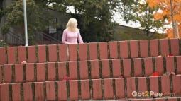 Brick Steps screen cap #2