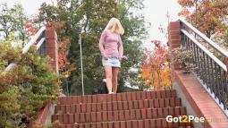 Brick Steps screen cap #4
