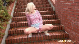 Brick Steps screen cap #9