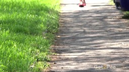 Little Red Shoes screen cap #2